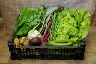 Picture of £9.00 Vegetable box